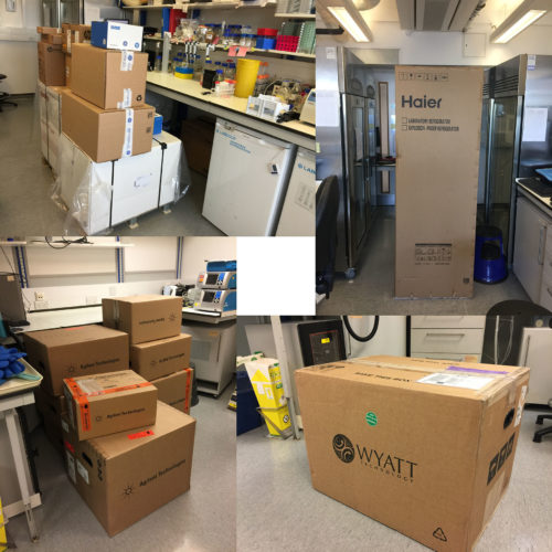 This feels a bit like Christmas: new equipment has arrived. Many thanks to the Wellcome Trust and ICR for supporting our work! (August 2019)