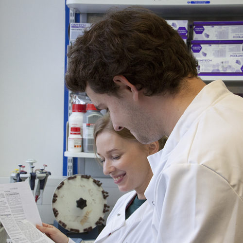 2020 Summer Studentship position available
